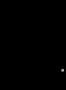 Padi Logo Vectors Free Download.