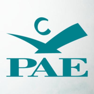 PAE Global.