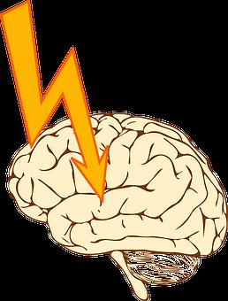 Brain, Health, Medical.