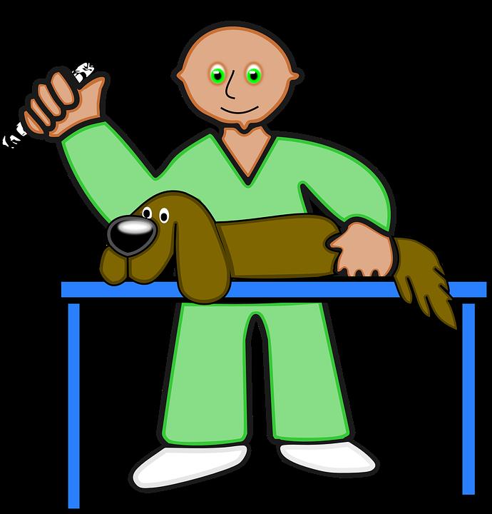Dog, Health, Medical.