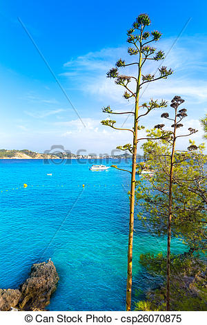 Picture of Majorca Cala Fornells beach Paguera Peguera Calvia in.