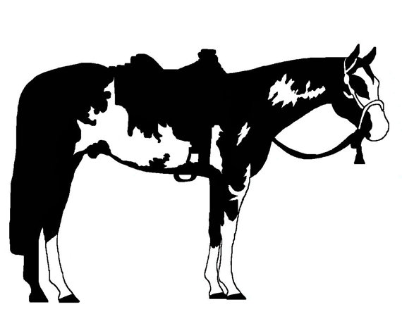 Western Paint Horse Decal.