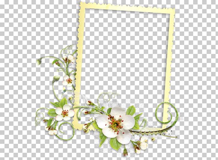 Frames PaintShop Pro, cornici PNG clipart.