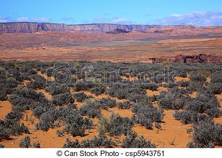 Stock Photography of Orange Sand Painted Desert Green Sagebrush.