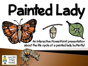 Painted Lady Butterflies ~ An Interactive by Smart Chick.