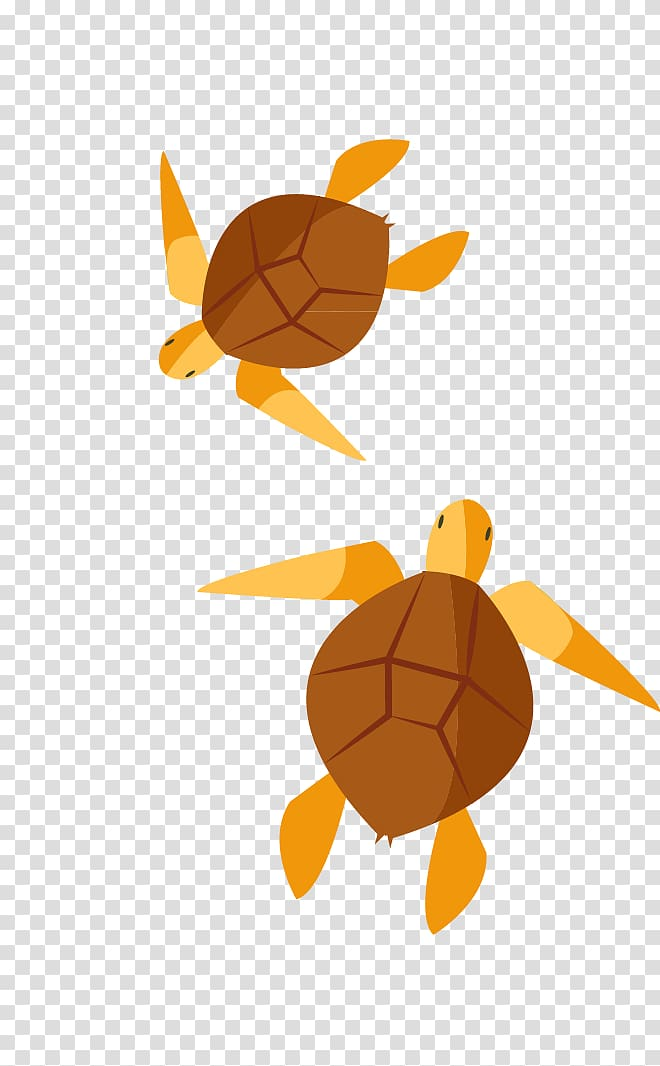 Turtle , painted turtle transparent background PNG clipart.