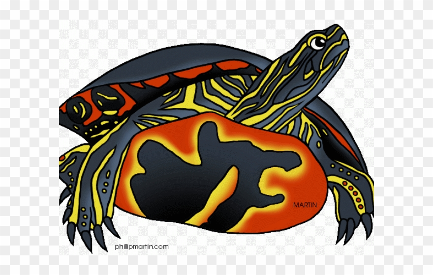 Tortoise Clipart Painted Turtle.