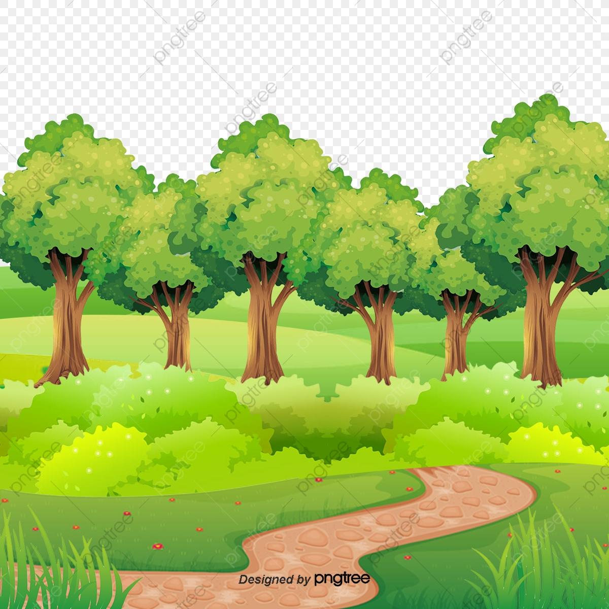 A Paisagem Da Selva , Plantas, As árvores, A Paisagem PNG e.