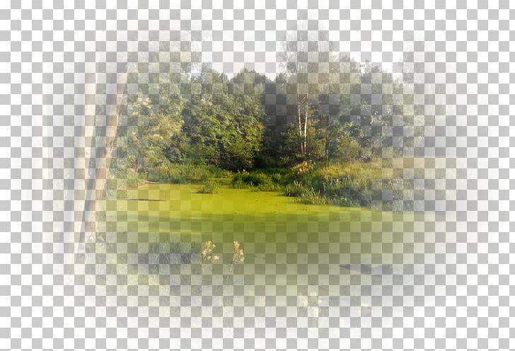 Water Resources Desktop Landscape Trident PNG, Clipart.