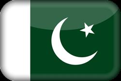 Pakistan flag icon.