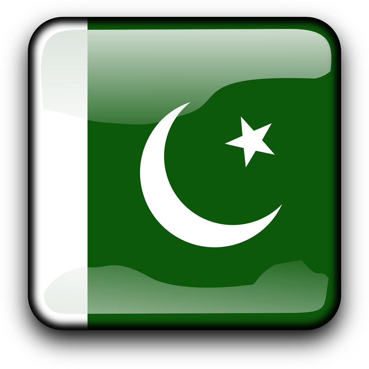 Pakistan Flag Country PNG.
