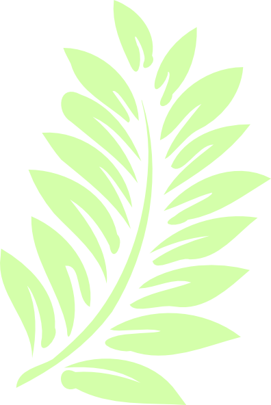 Palm leaf clipart #7