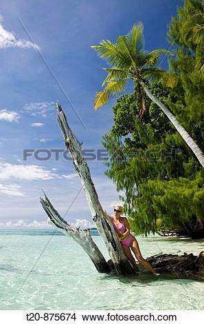 Stock Photo of Tourist at Beach, Micronesia, Palau t20.