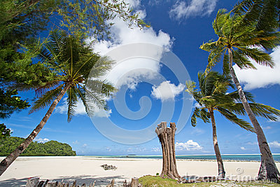 Palau's Blue Sea And Blue Sky Stock Images.