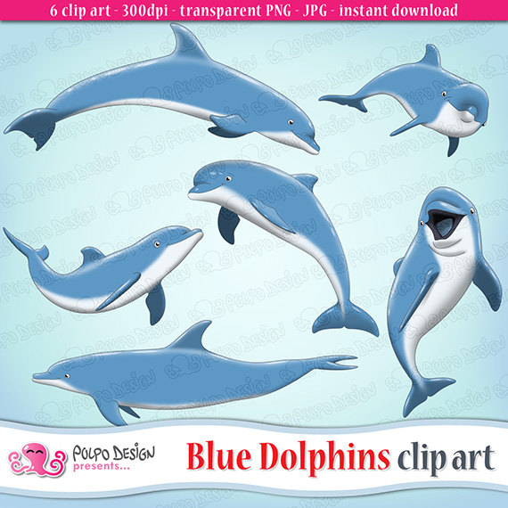 Blue Dolphins clipart. Dolphin clipart dolphin clip art.