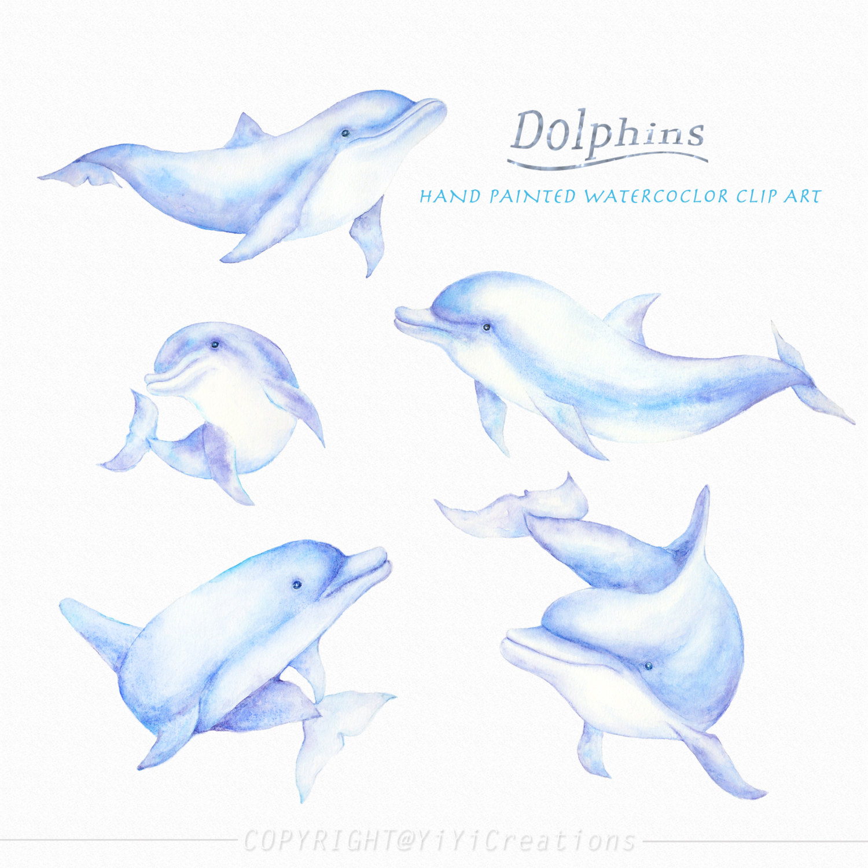 Dolphin invitation.