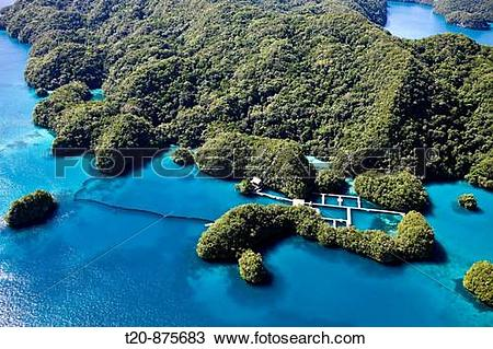 Stock Photo of Dolphin Bay in Rock Islands, Micronesia, Palau t20.