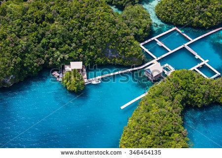Palau island clipart #10