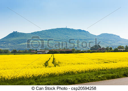 Stock Images of Palava with rape field, Czech Republic csp20594258.