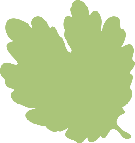 Illustration of pale green leaf silhouette.