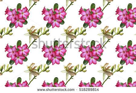 "azalea Art"" Stock Photos, Royalty."
