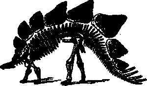 Paleontology Clip Art Download.