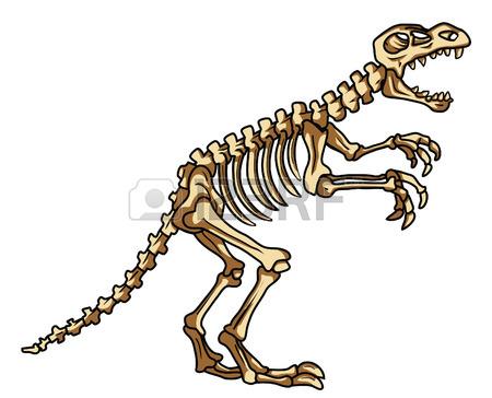 Paleontology clipart #16