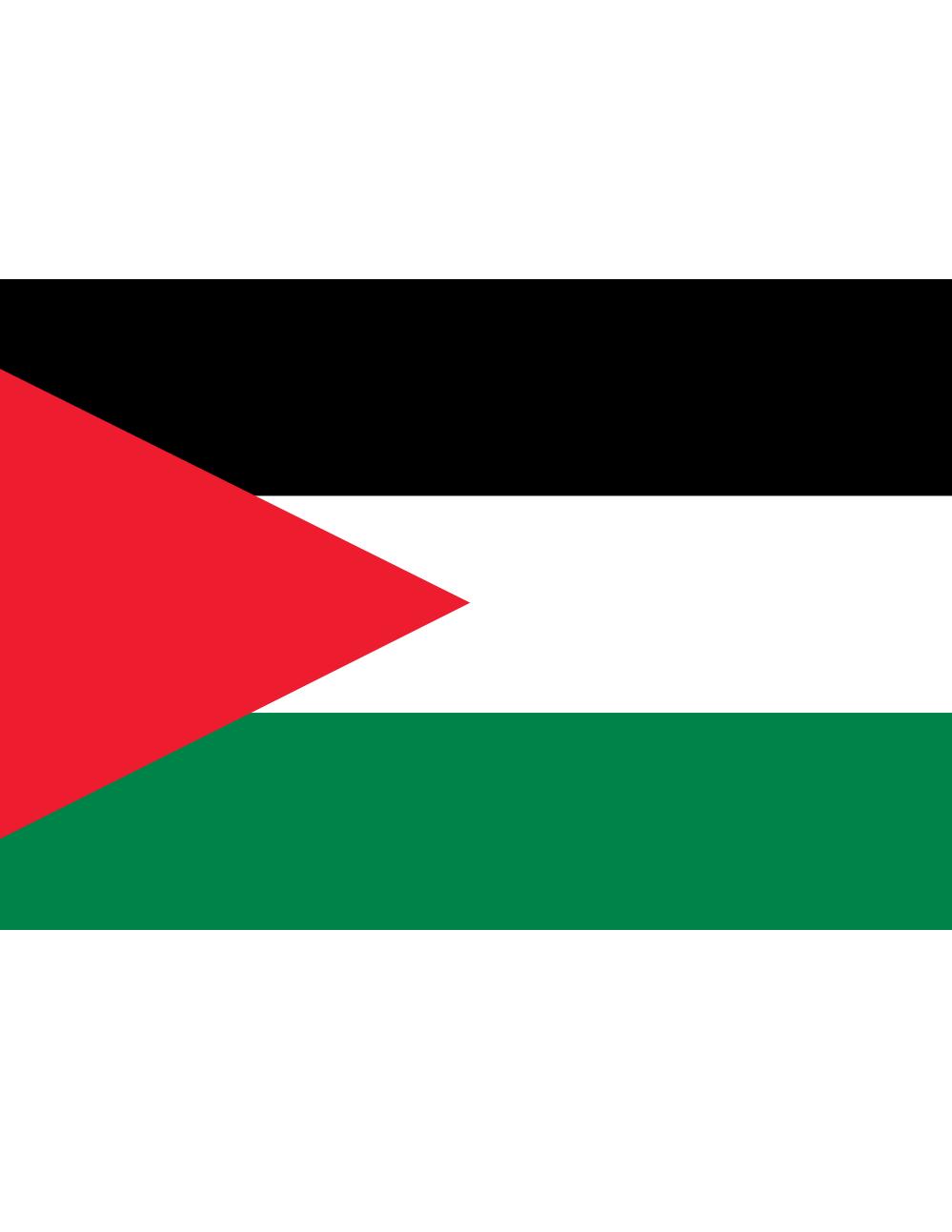Palestine flag clipart.