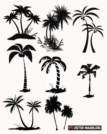 palm tree vector Palm Tree Vector In Ai Format.