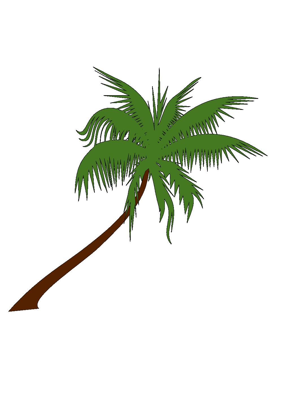 Palm Tree xochi.info supercalifragilisticexpialidocious Flowers.