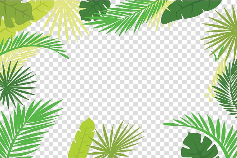 Arecaceae Text Branch Leaf Illustration, Palm leaf border.