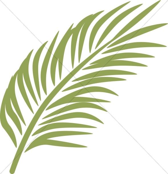 Single Palm in Calming Green.