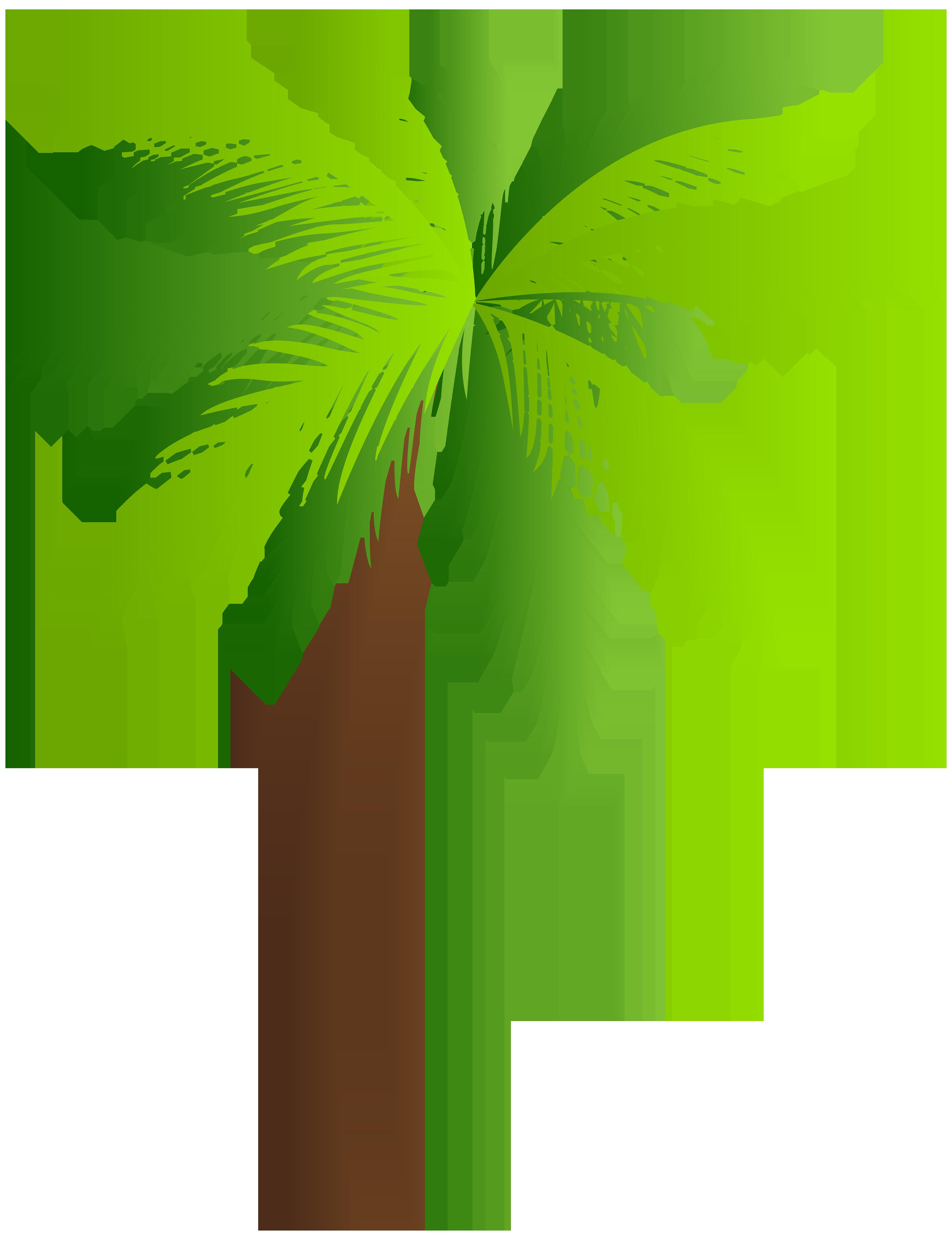 Palm PNG Clip Art Image.