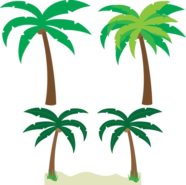 Palm door clipart #5