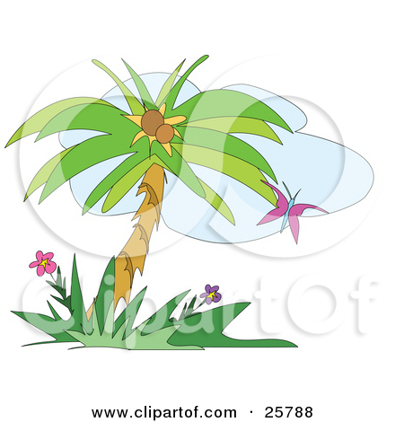 Palm flower clipart #19