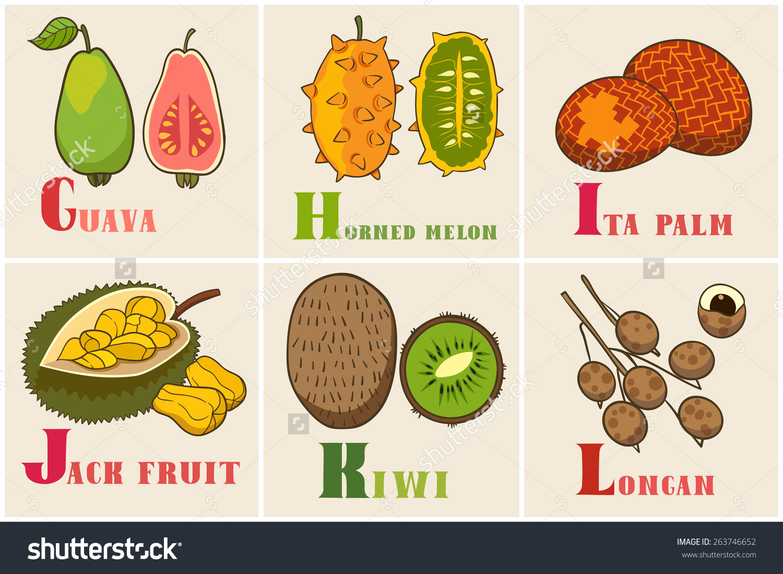Palm fruit clipart #7