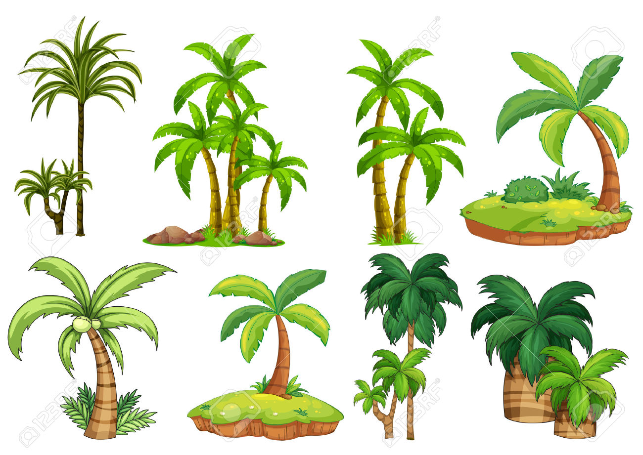 1,580 Palm Garden Stock Vector Illustration And Royalty Free Palm.