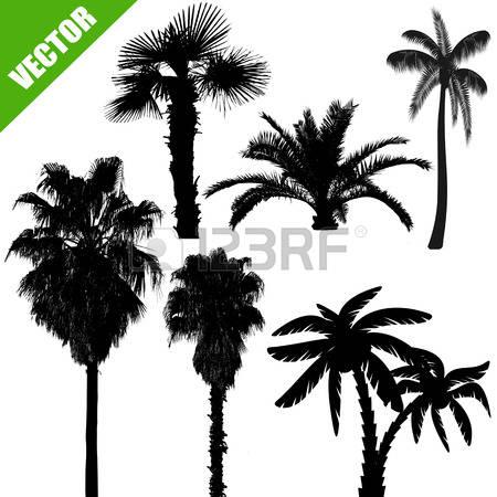 Palm garden clipart #15
