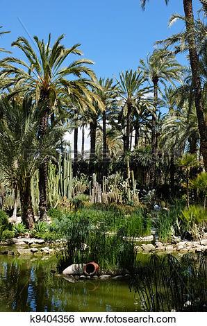 Palm garden clipart #18