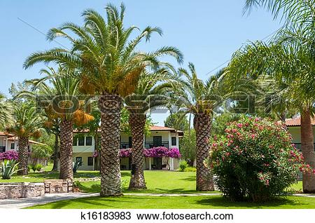 Stock Photo of Resort hotel with a palm garden. Turkey k16183983.