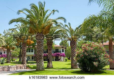 Palm garden clipart #16