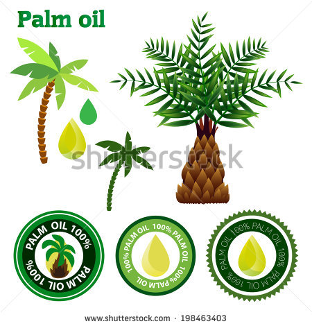 Palm genus clipart #1