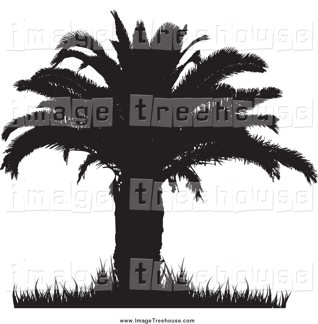 Clipart of a Silhouetted Black Palm Tree with a Thick Trunk and.