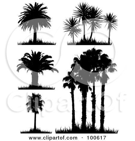 Palm grass clipart #20