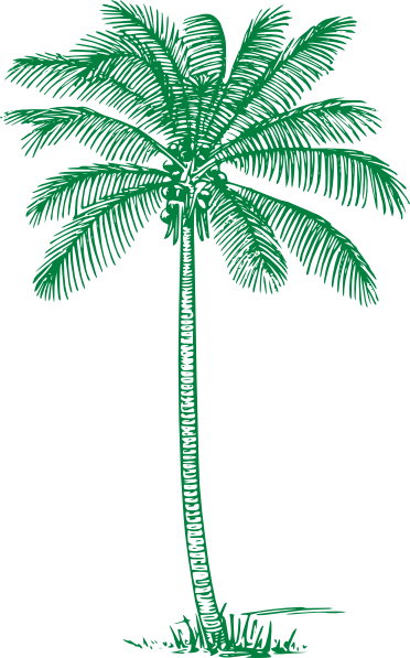 Palm green clipart #13