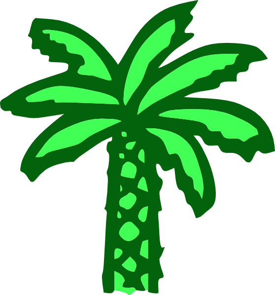 Cartoon Green Palm Tree clip art Free Vector / 4Vector.