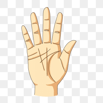 Hand Palm Png, Vector, PSD, and Clipart With Transparent.