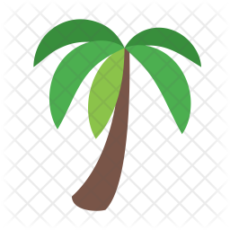 Palm tree Icon.