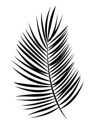 Palm leaf clipart black and white » Clipart Station.