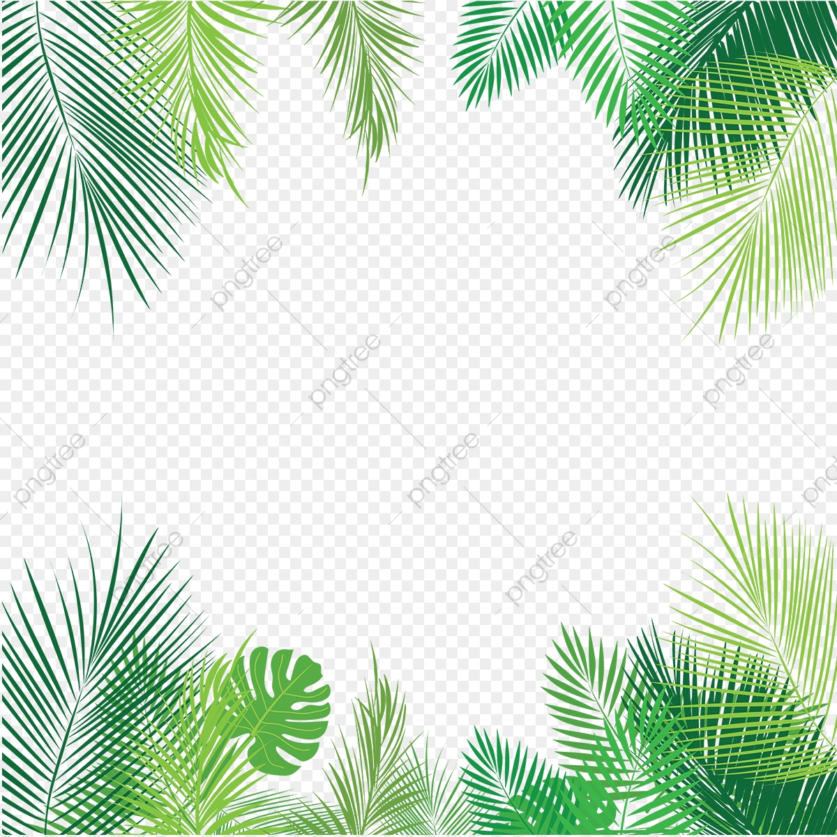 Tropical Palm Leaves Png, Palm, Tropical Leaves, Leaves PNG.